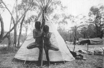 australianferals