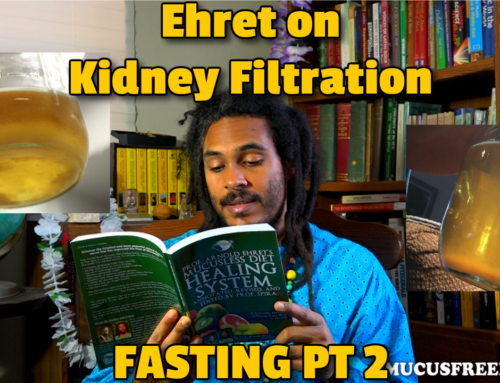 Ehret on Kidney Filtration During a Fast